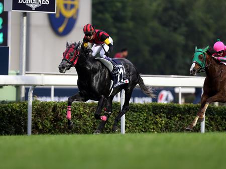 武豊騎手騎乗のエイシンヒカリが鮮やかに逃げ切りGI初制覇を香港の地で達成した(撮影:高橋 正和)