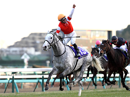 有馬記念で有終の美を飾れるかゴールドシップ(写真は2012年有馬記念優勝時、撮影:下野雄規)