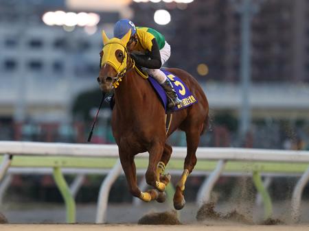 大野拓弥騎手騎乗のサウンドトゥルーが直線で脚を伸ばし一旦抜け出したホッコータルマエを捕らえ優勝した(撮影:高橋 正和)