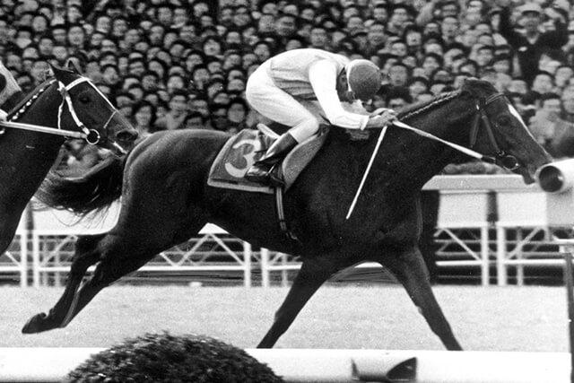 1977年の有馬記念