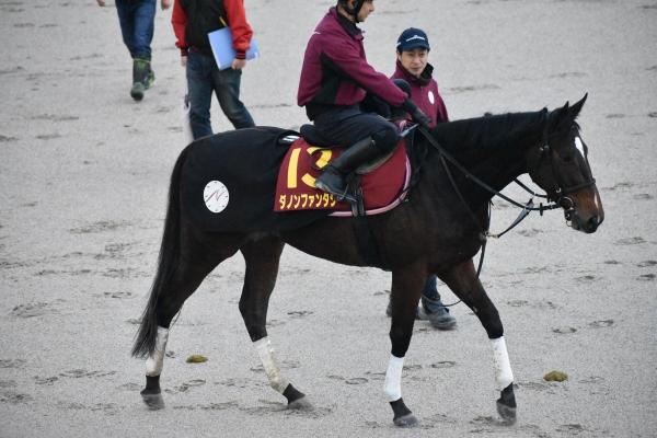 目移りするほど好気配の馬が多数! 連続的中を狙うGメンの阪神JF追い切り診断