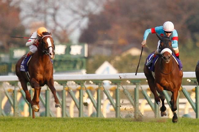 ミルコ騎手最速レース回顧