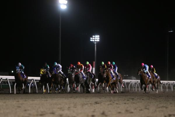 門別競馬場のレース風景