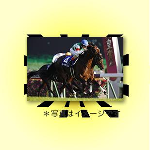 有馬記念優勝馬写真パネルル