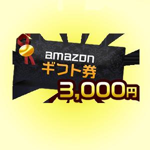 アマゾンギフト券3000円