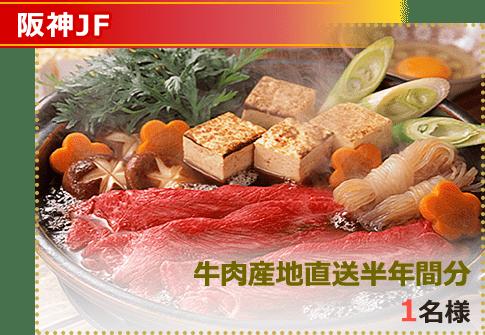 画像 阪神ジュベナイルフィリーズ 牛肉産地直送半年間分 1名様