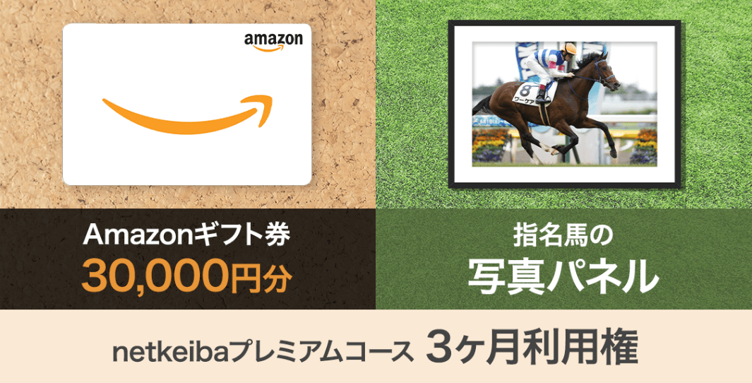 Amazonギフト券 3万円分 指名馬の写真パネル+netkeibaプレミアムコース3ヶ月利用権