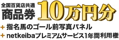 全国百貨店共通 商品券 10万円分+指名馬のゴール前写真パネル+プレミアムサービス1年間利用権