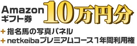 Amazonギフト券 10万円分+指名馬の写真パネル+プレミアムコース1年間利用権