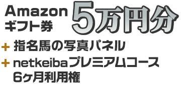 Amazonギフト券 5万円分+指名馬の写真パネル+プレミアムコース6ヶ月利用権