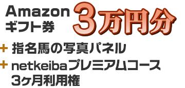 Amazonギフト券 3万円分+指名馬の写真パネル+プレミアムコース3ヶ月利用権