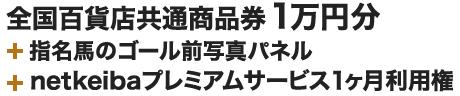 全国百貨店共通 商品券 1万円分+指名馬のゴール前写真パネル+プレミアムサービス1か月利用権