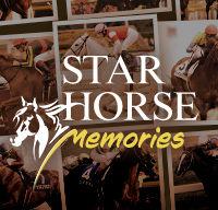 STAR HORSE Memories