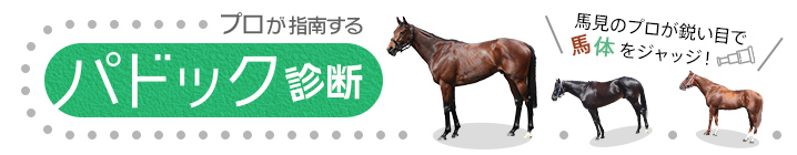 【エリザベス女王杯】理想的な成長が馬体からもうかがえるリスグラシュー