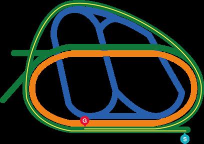 コースマップ 中山11R AJCC
