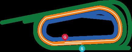 コースマップ 京都11R 東海S