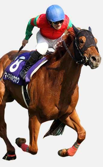 前走敗北から巻き返せる馬の見極め