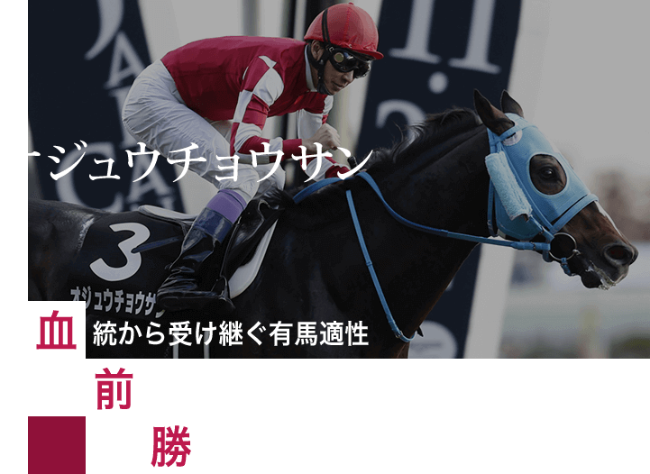 血統から受け継ぐ有馬適性 前走はジャパンCと同舞台 勝ち時計が示す平地の脚力