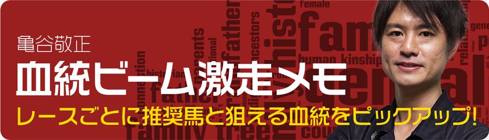 血統ビーム激走メモ(全場解説)