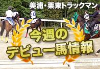 ダイヤモンドビコーの産駒、ペルセヴェランテが戸崎騎手でデビュー!