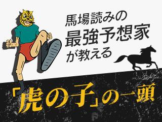 CBC賞が行われる今年の阪神芝はタフな馬場