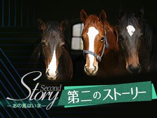 """元地方騎手が描く夢『""""ソフト競馬""""で引退馬の力になりたい』"""