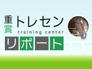 【共同通信杯】マイラプソディ「東京コースは合っている、スムーズな競馬ができれば」