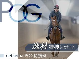 【POG】来年の牝馬クラシック路線を沸かせる2頭