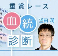 望田潤 重賞レース血統診断