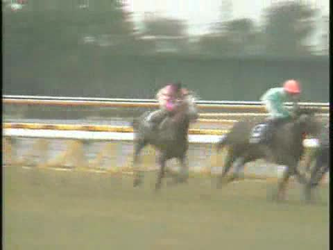 天皇賞(秋) レース結果   1991年10月27日 東京10R - netkeiba.com