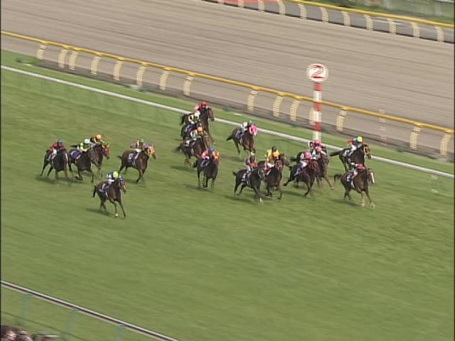 第59回安田記念 2009年6月7日 東京11R