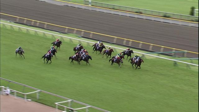 第64回安田記念 2014年6月8日 東京11R