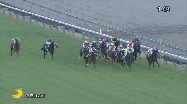 中日新聞杯2018 レース映像