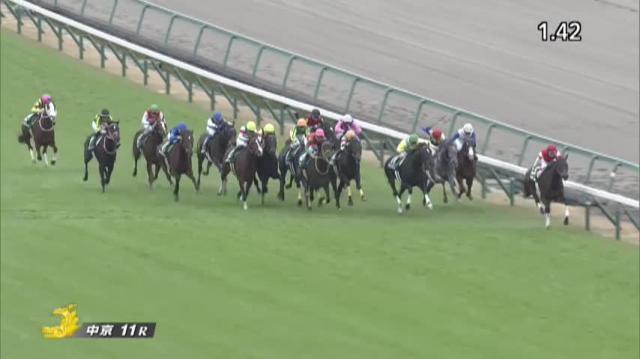 中日新聞杯 レース映像