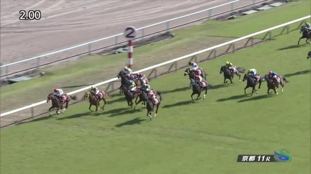 京都新聞杯 レース映像
