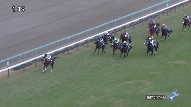 阪神JF2019 レース映像