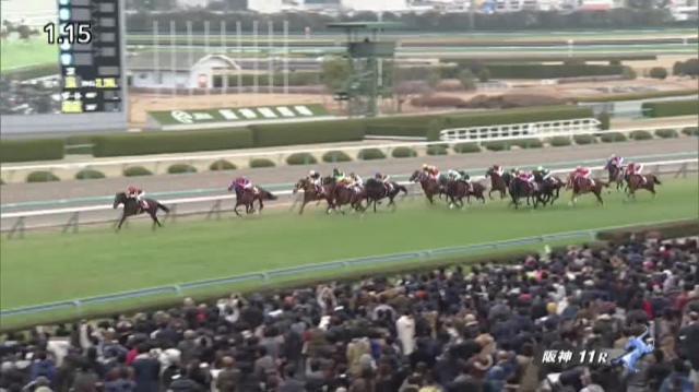 阪神カップ2019 レース映像