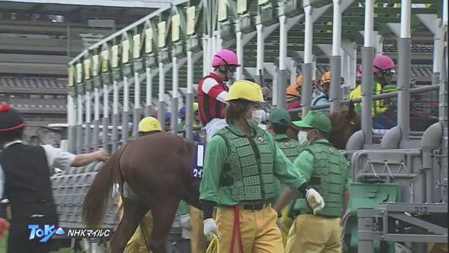 NHKマイルC レース映像