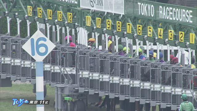 ユニコーンS レース映像