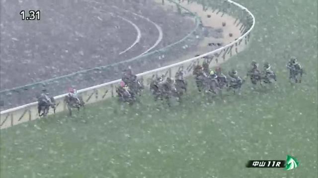 中山牝馬S レース映像