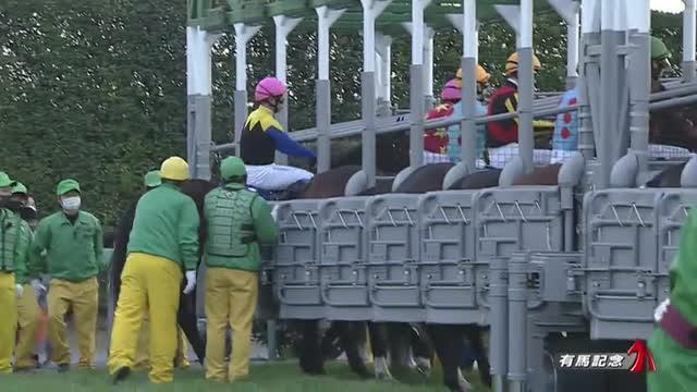 有馬記念2020 レース映像