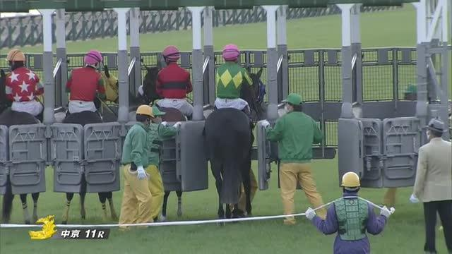 中日新聞杯2020 レース映像