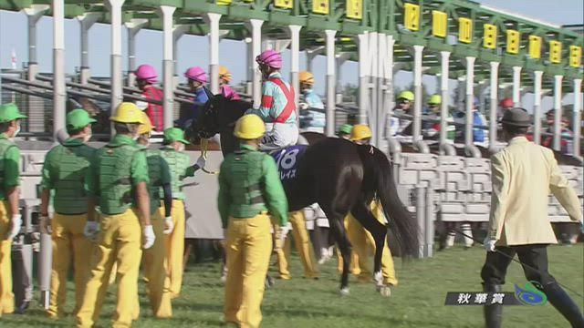 秋華賞 レース映像