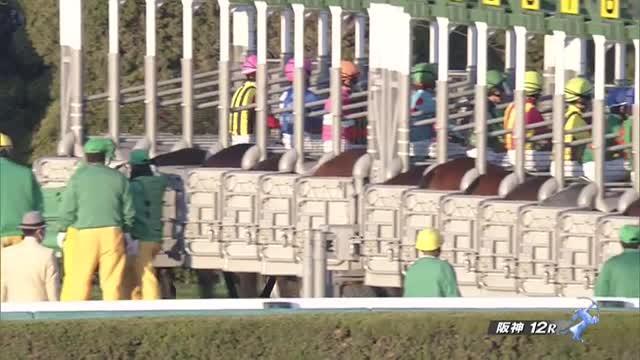 京阪杯2020 レース映像
