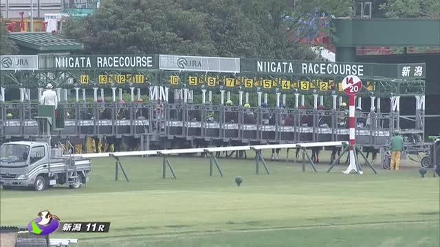 新潟大賞典 レース映像