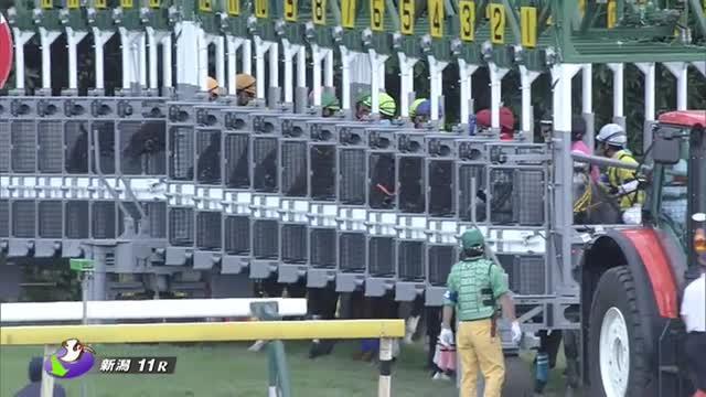 関屋記念 レース映像