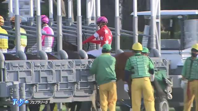 フェブラリーS レース映像
