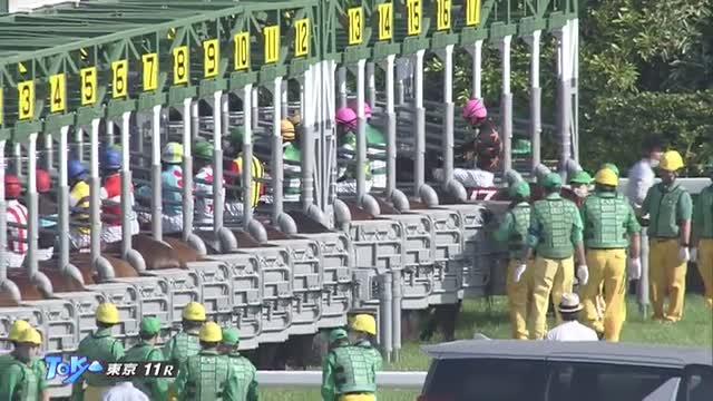 京王杯SC レース映像