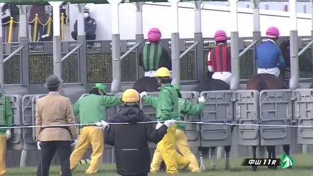 中山金杯 レース映像
