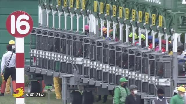 京都金杯 レース映像